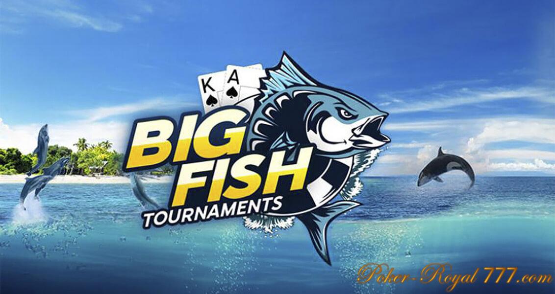 888 турнир bid fish