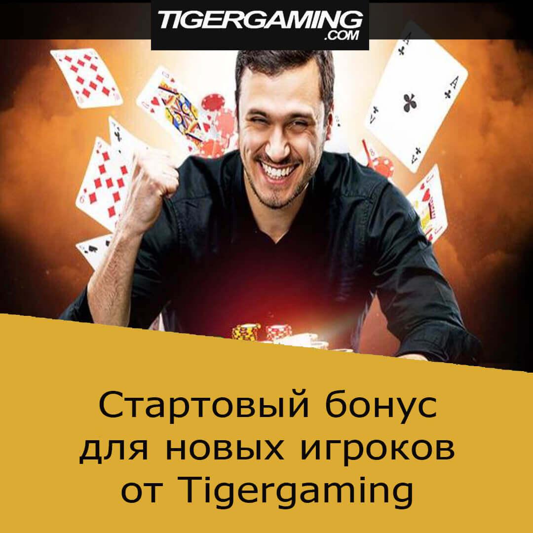 Tigergaming poker: бонус для новых игроков